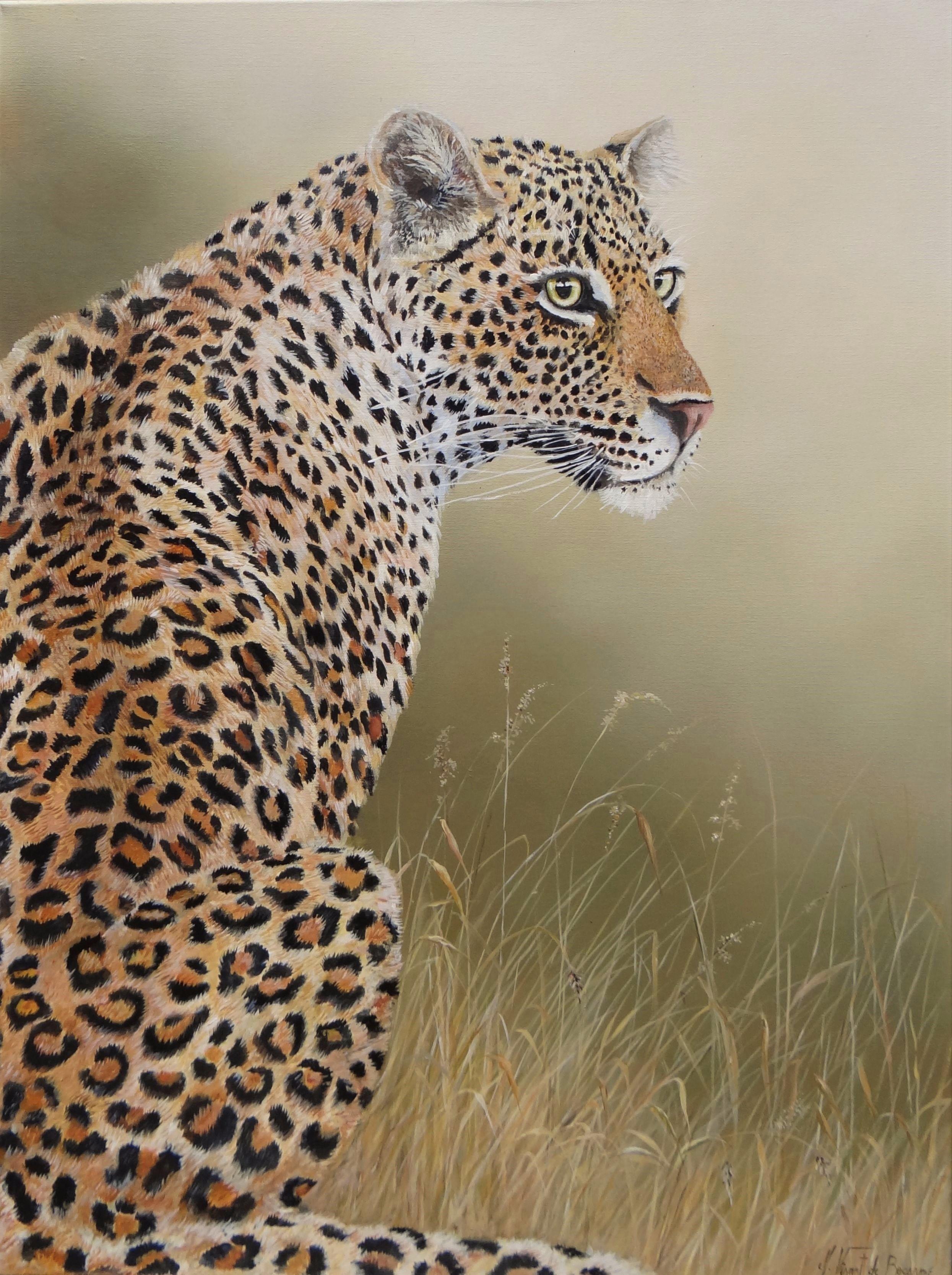 leopard de dos