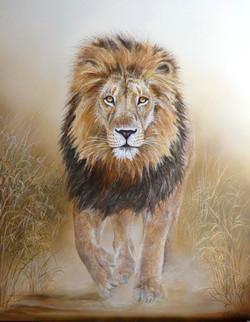 Lion en marche