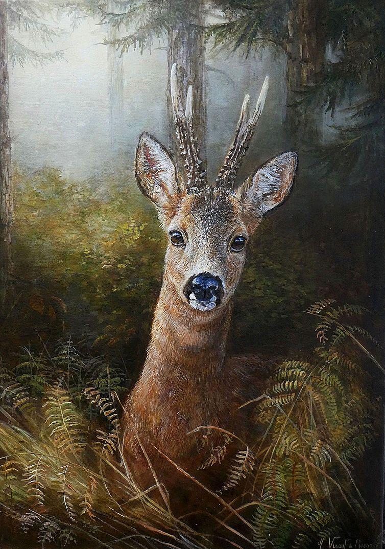 Surpris dans les bois