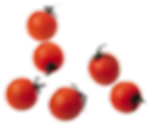 Cherry Tomato.png