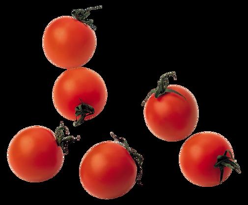 Cherry Tomato.png