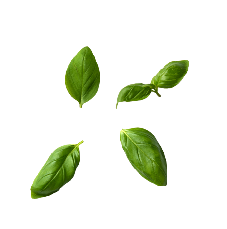 Basil Leaves.png