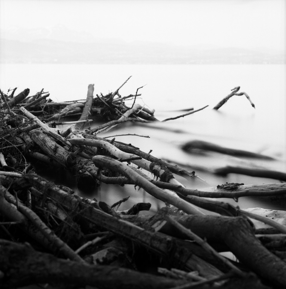 Film#62-Frame#06.jpeg