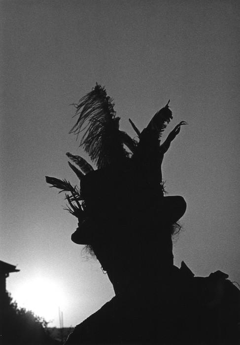 Dark Horse sunset.jpg