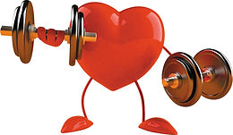 Muscle Building: EGYM Training Program