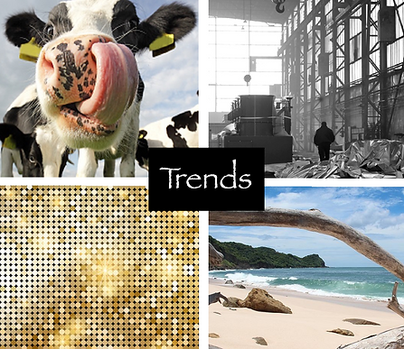 Trends Your Dutch Living