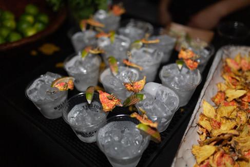 Cocktails 2019.jpg
