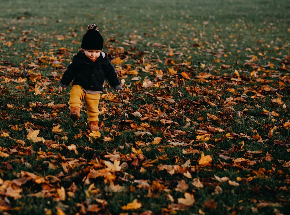 Zwerg im Herbst
