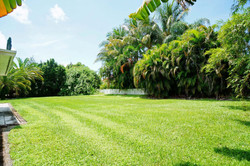 Expansive Outdoor Living Potential