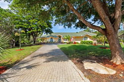 Mature Oaks and Palms