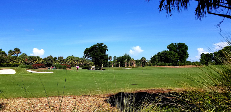 La Playa course in view, not other homes
