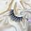Thumbnail: Exotic Lashes