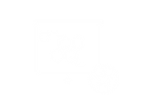 Website icons_Mastering Presentation des