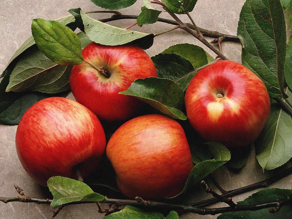 U Jablka