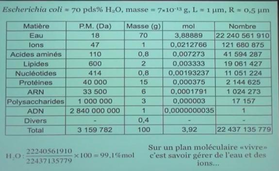 aquabion bioticwater anti-tartre Culligan BWT Leroy Merlin Homéo Dekalc calcaire