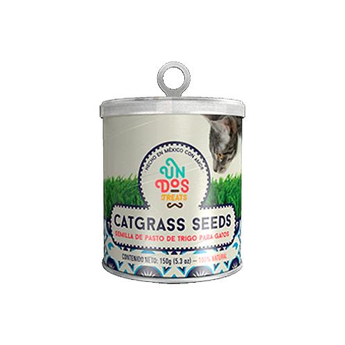 Catgrass Seeds (semillas de pasto de trigo)