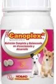 Holland Canoplex Jr.