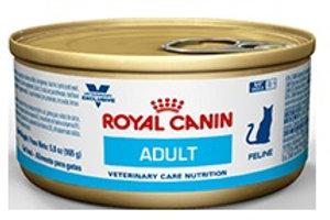 Royal Canin Lata Adult Feline
