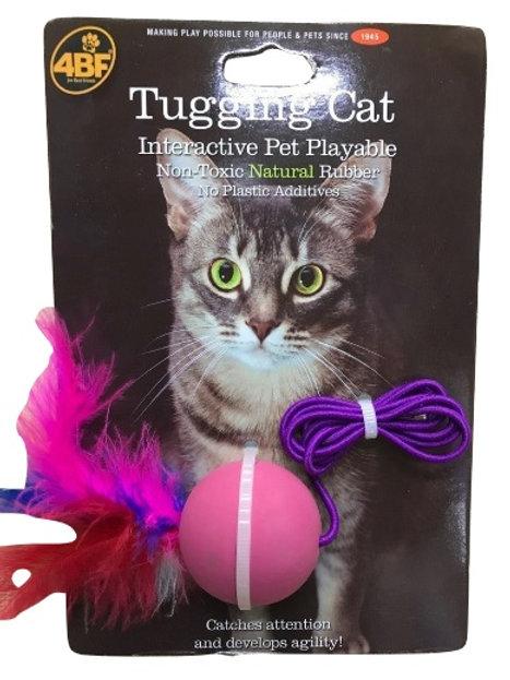 4BF Tugging Cat