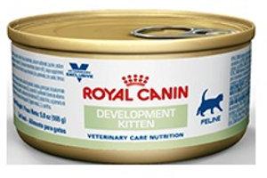 Royal Canin Lata Development Kitten