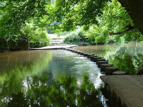 River Mole.JPG