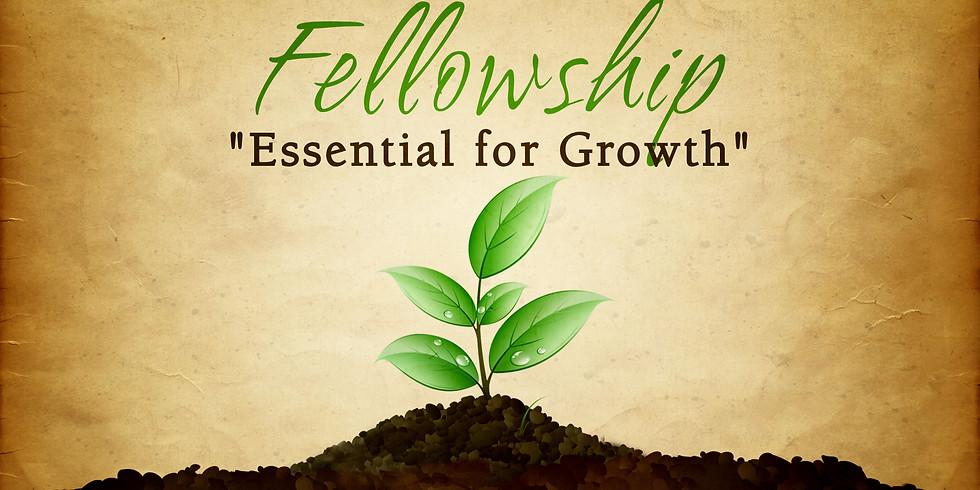 Fellowship Activity