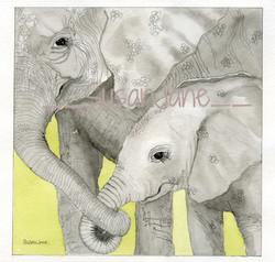 Elephant Mum & Baby