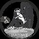 Логотип Студия Николаев.png