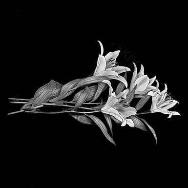 Гравировка лилий