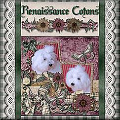 Renaissance Coton de Tulear Logo-BOE 202
