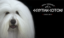Egyption Cotons Logo-2020 BOE.png