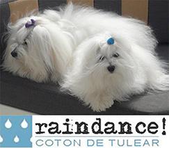 Raindance Cotons Logo.png