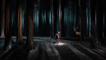 """La scénographie du spectacle de magie nouvelle """"Le bruit des loups"""" de Etienne Saglio"""