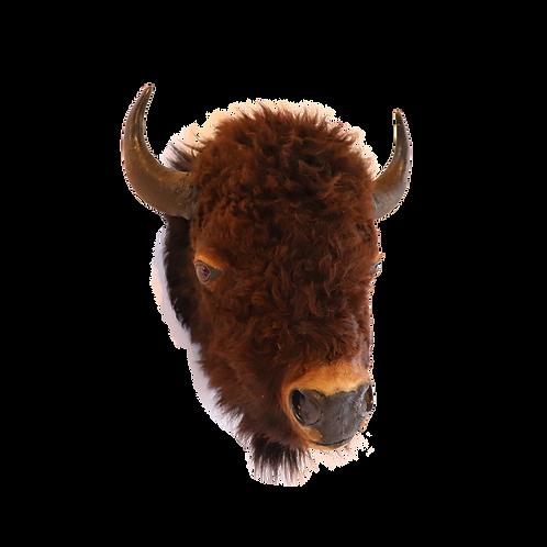 Montana Buffalo Shoulder Mount