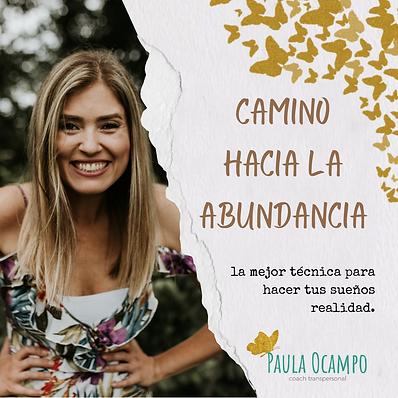 CAMINO HACIA LA ABUNDANCIA (3).png