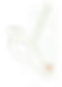 Starling_Logo.png