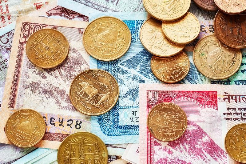 Непальська рупія (неп. रूपैयाँ) — національна валюта держави Непал.