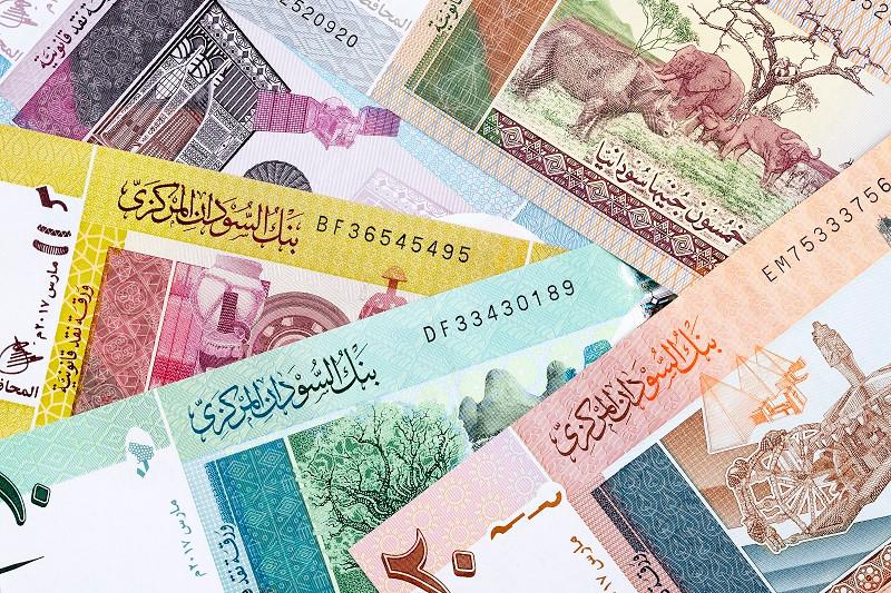 Суданський фунт — грошова одиниця Судану (у 1957–1992 роках та з 9 січня 2007 року) і, тимчасово, Південного Судану. Разом із єгипетським фунтом є офіційною валютою Халаібського трикутника.