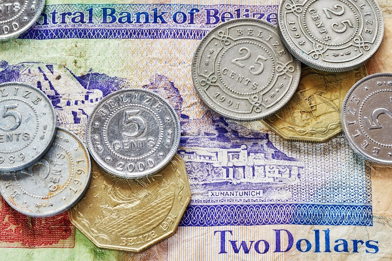 Белі́зький до́лар (англ. Belize Dollar, фр. Dollar de Belize) — грошова одиниця Белізу.  1 белізький долар = 100 центів. Міжнародне позначення — BZD.