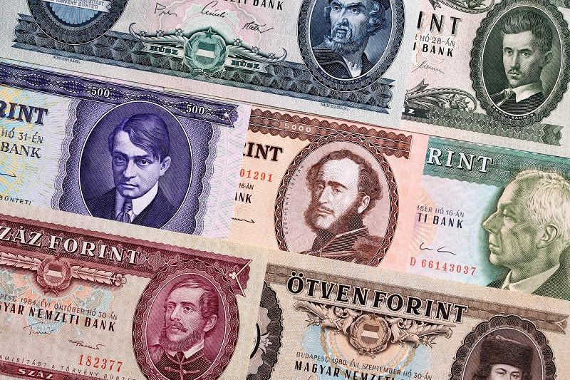 Угорський форинт (угор. Magyar forint; символ: Ft; код: HUF) — офіційна валюта Угорщини. Поділяється на 100 філлерів, хоча монети останніх вийшли з обігу. Центральний банк — Угорський національний банк.