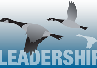 Five Leadership Lessons From Geese
