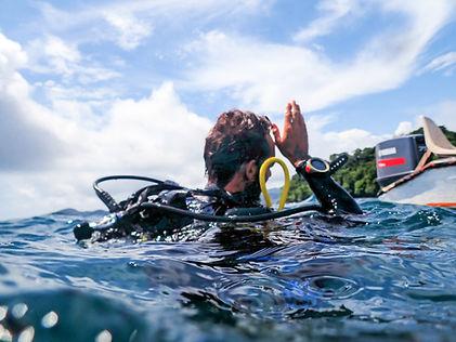 shark sign scuba diving coiba national park pixvae panama the ark divers instructor