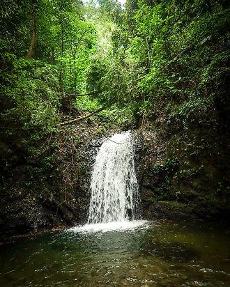 waterfall coiba national park pixvae panama pacific coast the ark divers excursion vacation