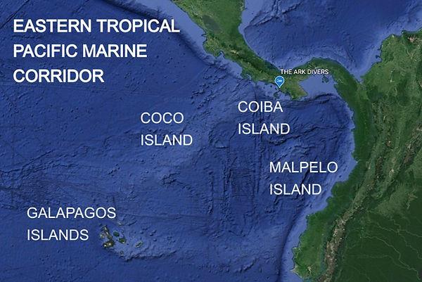 eastern tropical pacific marine corridor coco island coiba island malpelo island galapagos island the ark divers panama
