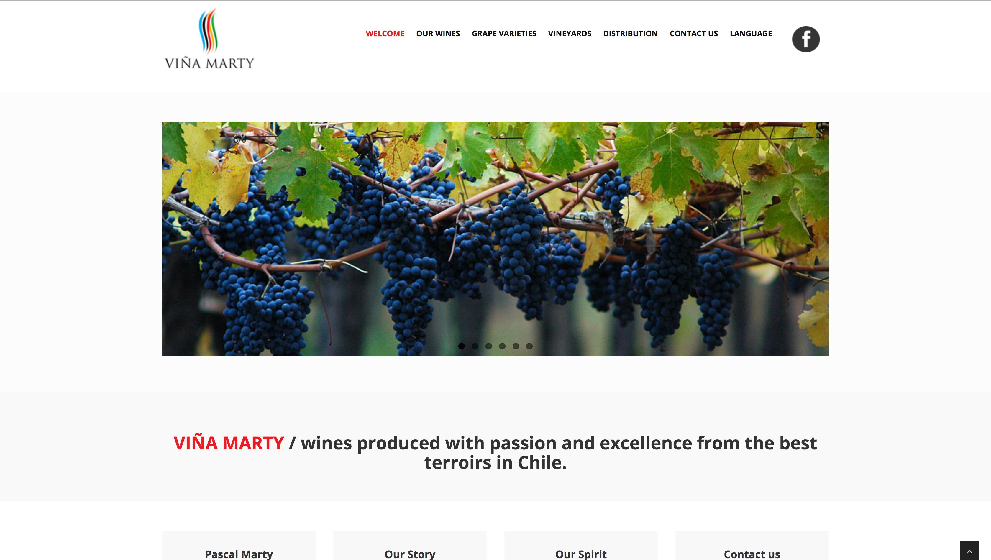 www.vinamarty.cl