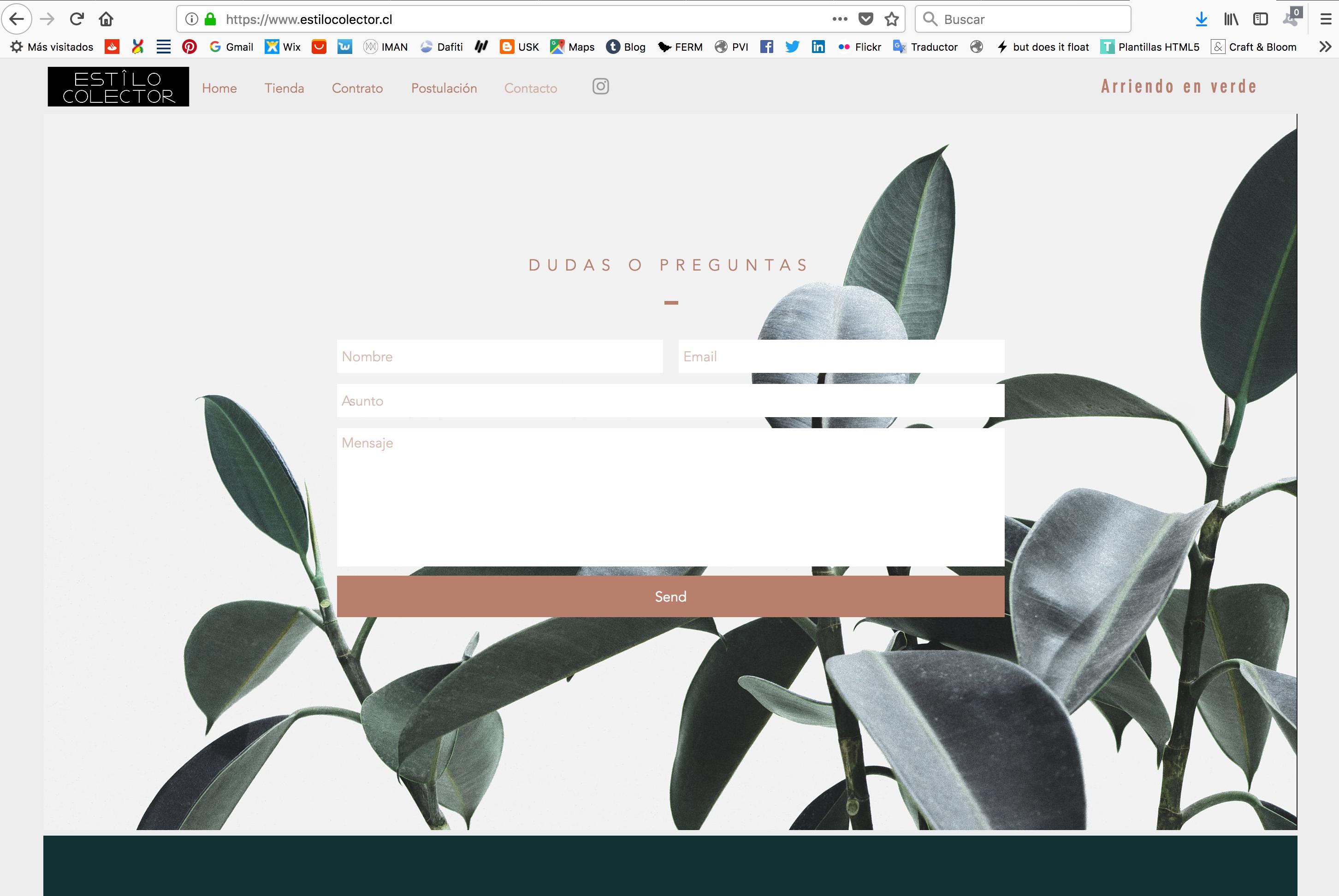 Diseño Website