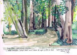 Bosque Parque Santa Rosa