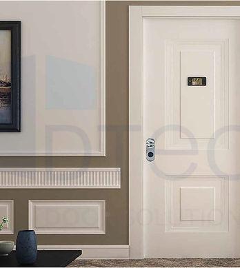 otel iç kapıları