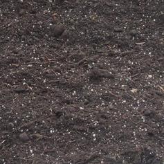 M/P Compost - John Innes