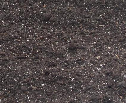 Multi Purpose Compost With John Innes